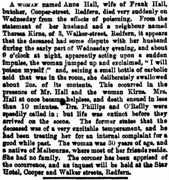 Anne Hall Redfern 1884.png