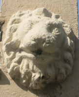 Qld Terrace Lion Head x