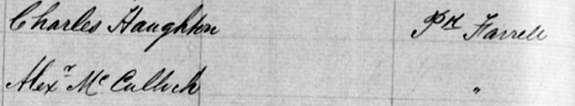 Macdonald Town Assessment Book Extract 1882