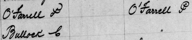 Macdonaldtown Assessment Book Extract 1890