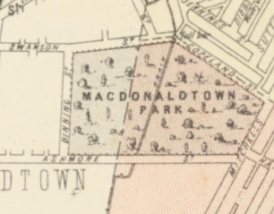 Map of Alexandria, Parishes of Alexandria and Petersham circa 1886 Macdonaldtown Park